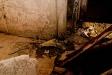 bunkersearchjena_2011_08_22_096-1